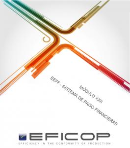 3-2-22_EFICOP_MODULO.22_EEFF_SISTEMA.DE.PAGO.FINANCIERAS_